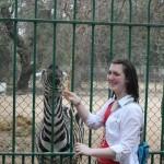 Cairo Zoo, Giza Zoo Day Tour